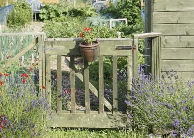 Beech Hill Allotments Gate to Success